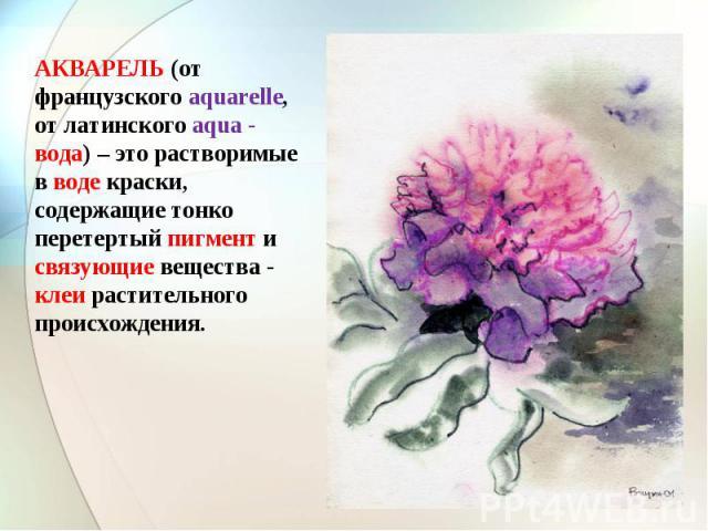 АКВАРЕЛЬ (от французского aquarelle, от латинского aqua - вода) – это растворимые в воде краски, содержащие тонко перетертый пигмент и связующие вещества - клеи растительного происхождения.