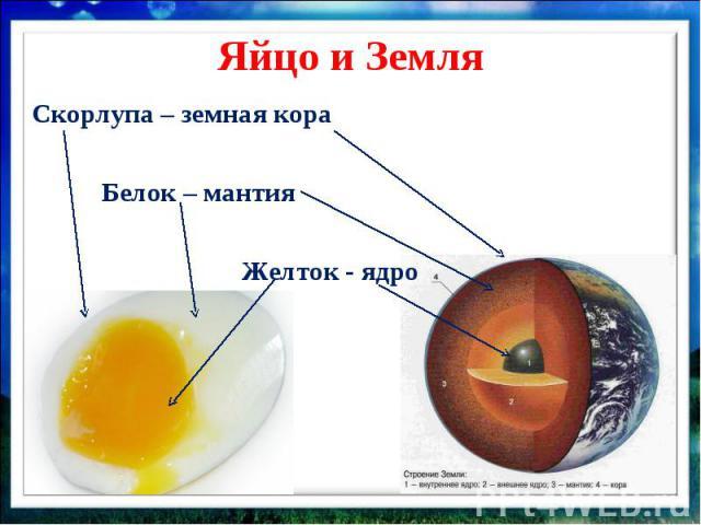 Яйцо и Земля Скорлупа – земная кора Белок – мантия Желток - ядро