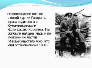 На ветке нашли клочок летной куртки Гагарина, права водителя, а в бумажнике нашл