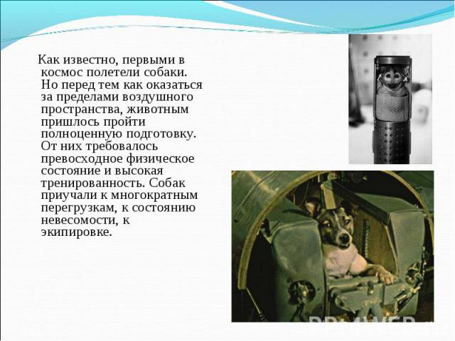 Как известно, первыми в космос полетели собаки. Но перед тем как оказаться за пределами воздушного пространства, животным пришлось пройти полноценную подготовку. От них требовалось превосходное физическое состояние и высокая тренированность. Собак п…