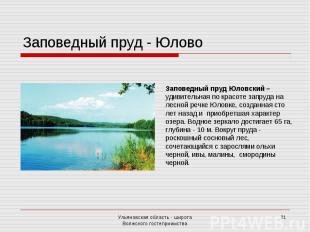 Заповедный пруд - ЮловоЗаповедный пруд Юловский – удивительная по красоте запруд