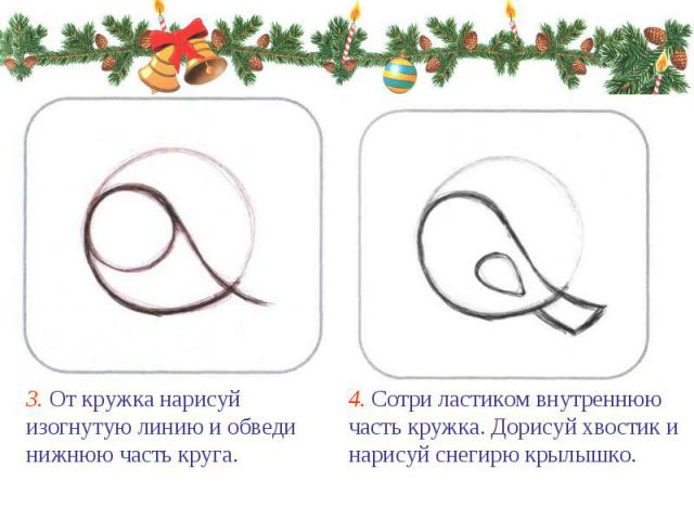 3. От кружка нарисуй изогнутую линию и обведи нижнюю часть круга. 4. Сотри ластиком внутреннюю часть кружка. Дорисуй хвостик и нарисуй снегирю крылышко.