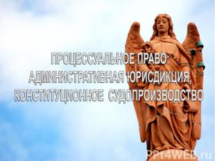 Процессуальное право: административная юрисдикция, конституционное судопроизводс