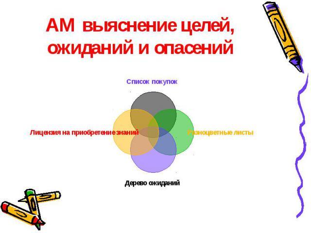 АМ выяснение целей, ожиданий и опасений