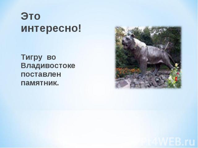 Это интересно! Тигру во Владивостоке поставлен памятник.
