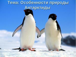 Тема: Особенности природы Антарктиды