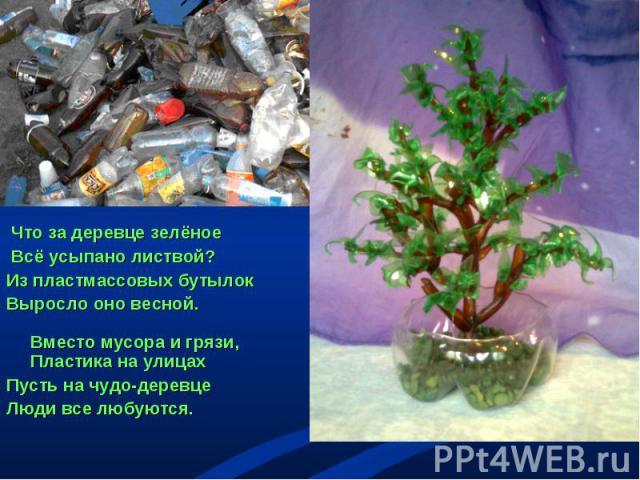 Что за деревце зелёное Всё усыпано листвой? Из пластмассовых бутылок Выросло оно весной. Вместо мусора и грязи, Пластика на улицах Пусть на чудо-деревце Люди все любуются.