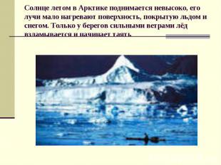 Солнце летом в Арктике поднимается невысоко, его лучи мало нагревают поверхность