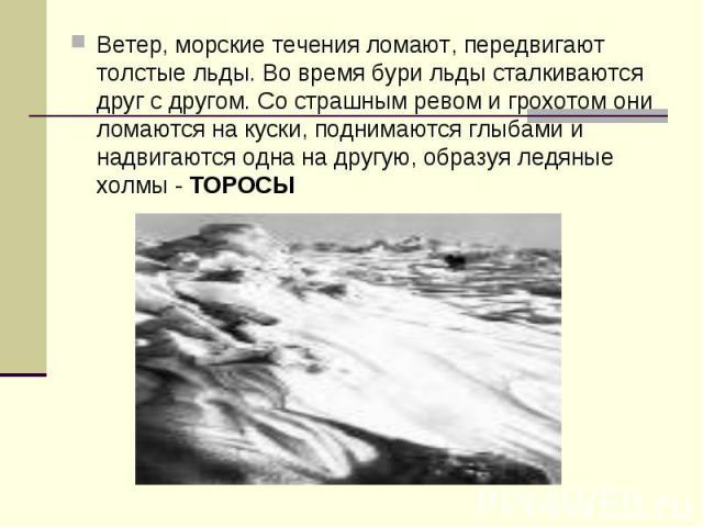 Ветер, морские течения ломают, передвигают толстые льды. Во время бури льды сталкиваются друг с другом. Со страшным ревом и грохотом они ломаются на куски, поднимаются глыбами и надвигаются одна на другую, образуя ледяные холмы - ТОРОСЫ