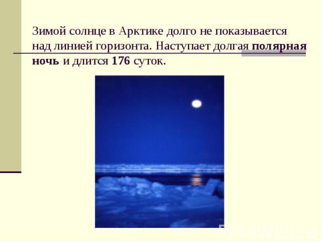 Зимой солнце в Арктике долго не показывается над линией горизонта. Наступает долгая полярная ночь и длится 176 суток.
