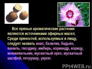 Все пряные ароматические растения являются источниками эфирных масел. Среди прян