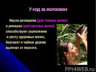 Уход за волосами Масла розмарина (для темных волос) и ромашки (для светлых волос