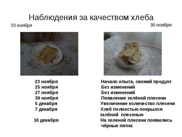 Наблюдения за качеством хлеба 23 ноября Начало опыта, свежий продукт 25 ноября Без изменений 27 ноября Без изменений 30 ноября Появление зелёной плесени 5 декабря Увеличение количество плесени 7 декабря Хлеб полностью покрылся зелёной плесенью 10 де…