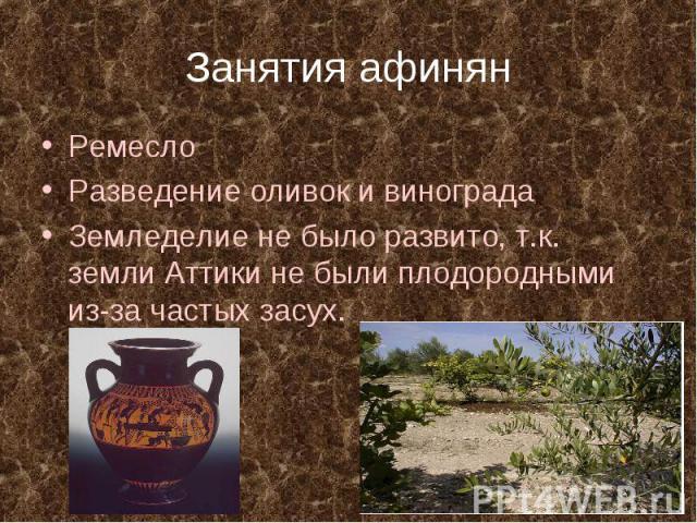 Занятия афинянРемесло Разведение оливок и винограда Земледелие не было развито, т.к. земли Аттики не были плодородными из-за частых засух.