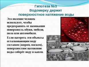 Гипотеза №3 Водомерку держит поверхностное натяжение водыЭто явление человек исп