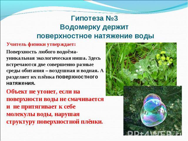 Гипотеза №3 Водомерку держит поверхностное натяжение водыУчитель физики утверждает: Поверхность любого водоёма- уникальная экологическая ниша. Здесь встречаются две совершенно разные среды обитания – воздушная и водная. А разделяет их плёнка поверхн…
