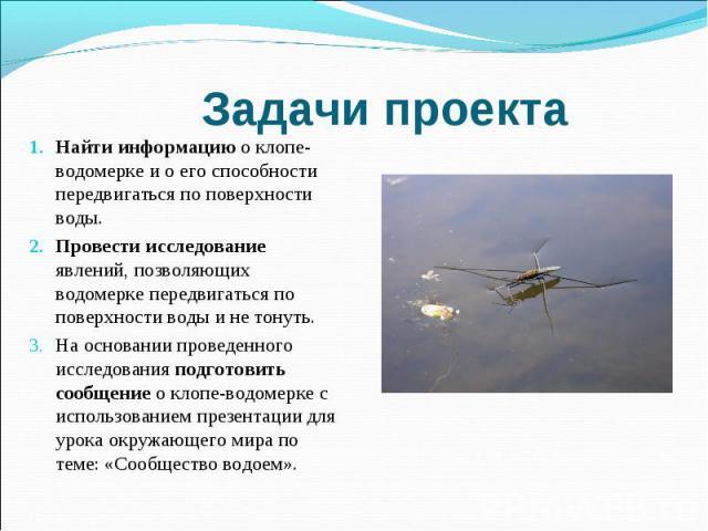Задачи проектаНайти информацию о клопе-водомерке и о его способности передвигаться по поверхности воды. Провести исследование явлений, позволяющих водомерке передвигаться по поверхности воды и не тонуть. На основании проведенного исследования подгот…