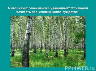 А что значит относиться с уважением? Это значит почитать лес, словно живое сущес