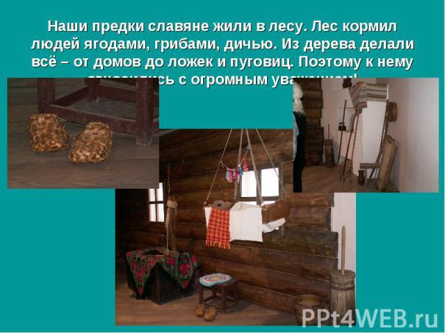 Наши предки славяне жили в лесу. Лес кормил людей ягодами, грибами, дичью. Из дерева делали всё – от домов до ложек и пуговиц. Поэтому к нему относились с огромным уважением!