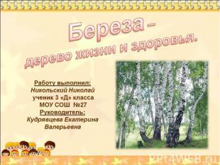 Береза – дерево жизни и здоровья Работу выполнил: Никольский Николай ученик 3 «Д