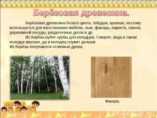 Берёзовая древесина. Берёзовая древесина белого цвета, твёрдая, крепкая, поэтому