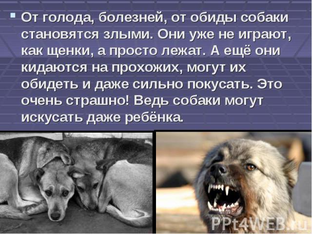 От голода, болезней, от обиды собаки становятся злыми. Они уже не играют, как щенки, а просто лежат. А ещё они кидаются на прохожих, могут их обидеть и даже сильно покусать. Это очень страшно! Ведь собаки могут искусать даже ребёнка.