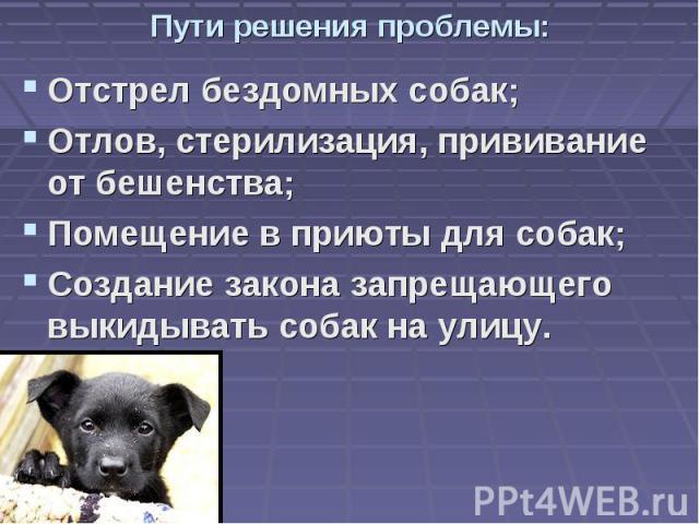 Пути решения проблемы: Отстрел бездомных собак; Отлов, стерилизация, прививание от бешенства; Помещение в приюты для собак; Создание закона запрещающего выкидывать собак на улицу.