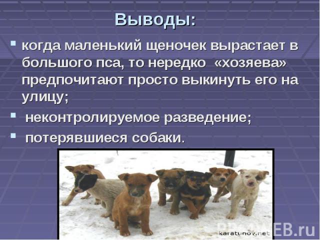 Выводы: когда маленький щеночек вырастает в большого пса, то нередко «хозяева» предпочитают просто выкинуть его на улицу; неконтролируемое разведение; потерявшиеся собаки.