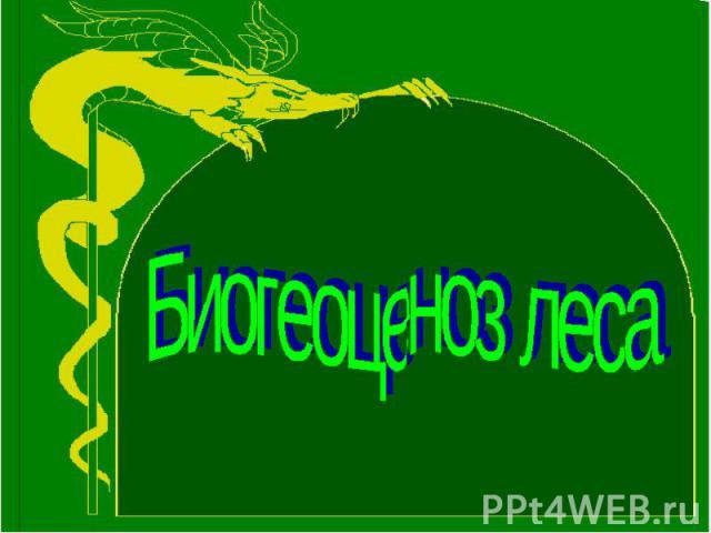 Биогеоценоз леса