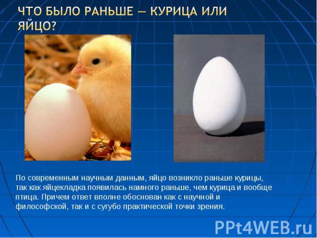 Что было раньше — курица или яйцо? По современным научным данным, яйцо возникло раньше курицы, так как яйцекладка появилась намного раньше, чем курица и вообще птица. Причем ответ вполне обоснован как с научной и философской, так и с сугубо практиче…