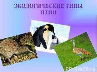 Экологические типы птиц