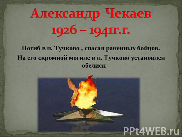 Александр Чекаев 1926 – 1941г.г. Погиб в п. Тучково , спасая раненных бойцов. На его скромной могиле в п. Тучково установлен обелиск