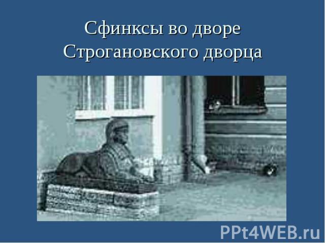 Сфинксы во дворе Строгановского дворца