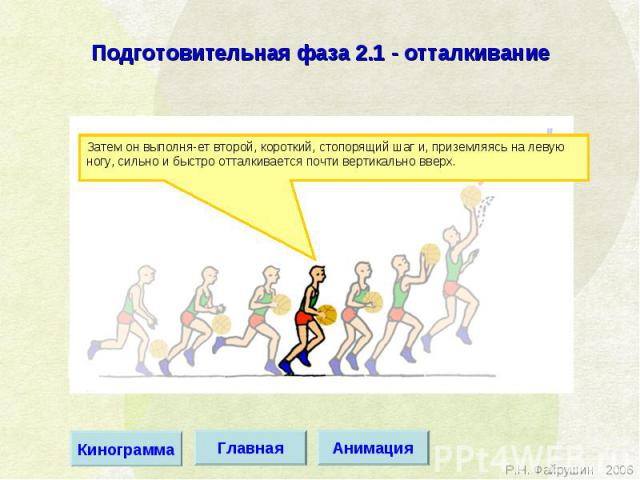 Подготовительная фаза 2.1 - отталкивание Затем он выполня ет второй, короткий, стопорящий шаг и, приземляясь на левую ногу, сильно и быстро отталкивается почти вертикально вверх.