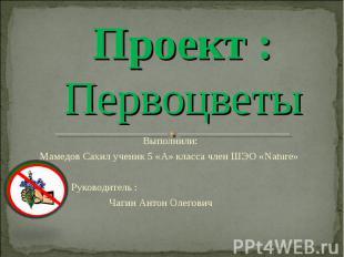 Проект : Первоцветы Выполнили: Мамедов Сахил ученик 5 «А» класса член ШЭО «Natur