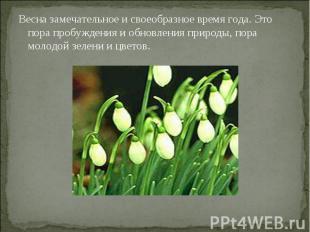 Весна замечательное и своеобразное время года. Это пора пробуждения и обновления