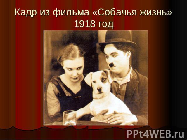 Кадр из фильма «Собачья жизнь» 1918 год