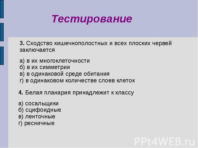 Терминология