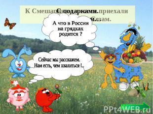 А что в России на грядках родится ? Сейчас мы расскажем. Нам есть, чем хвалиться