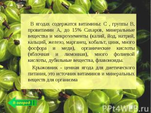 В ягодах содержатся витамины: С , группы В, провитамин А, до 15% Сахаров, минера