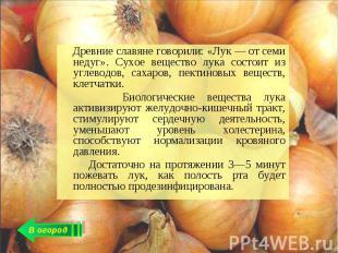 Древние славяне говорили: «Лук — от семи недуг». Сухое вещество лука состоит из