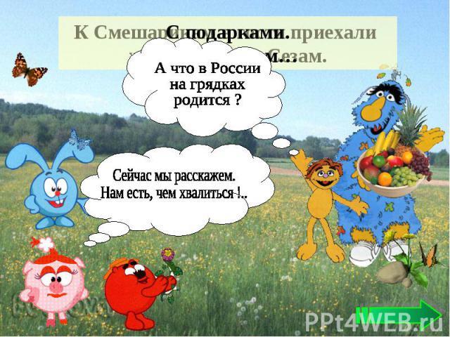 А что в России на грядках родится ? Сейчас мы расскажем. Нам есть, чем хвалиться !..