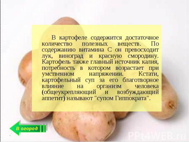 В картофеле содержится достаточное количество полезных веществ. По содержанию витамина С он превосходит лук, виноград и красную смородину. Картофель также главный источник калия, потребность в котором возрастает при умственном напряжении. Кстати, ка…
