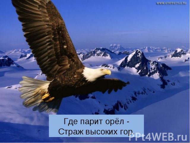 Где парит орёл - Страж высоких гор.