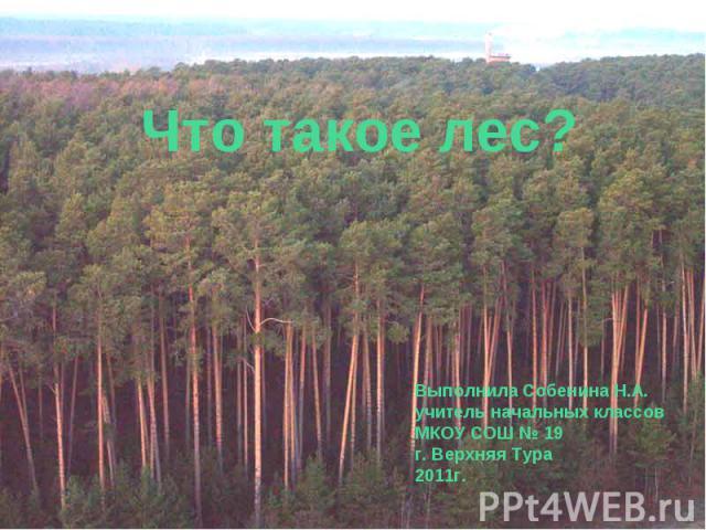 Что такое лес? Выполнила Собенина Н.А. учитель начальных классов МКОУ СОШ № 19 г. Верхняя Тура 2011г.