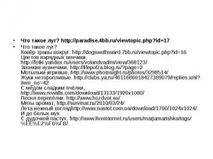 Что такое луг? http://paradise.4bb.ru/viewtopic.php?id=17 Что такое луг? Ковёр т