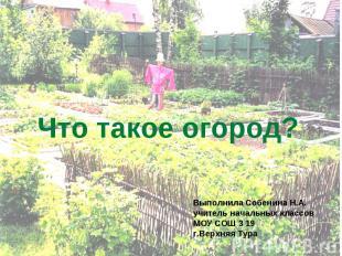 Что такое огород? Выполнила Собенина Н.А. учитель начальных классов МОУ СОШ 3 19