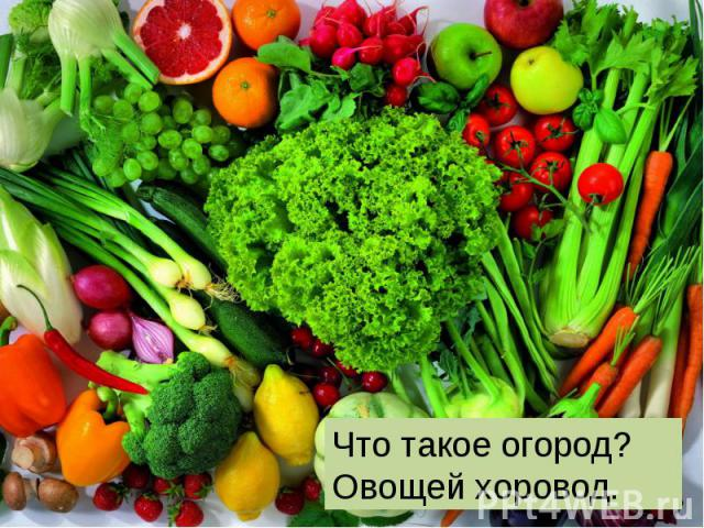 . .Что такое огород? Овощей хоровод.