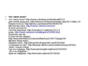 Что такое поле? Что такое поле? http://www.e-desktop.ru/download/8711/ Для коней