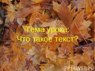 Тема урока: Что такое текст?